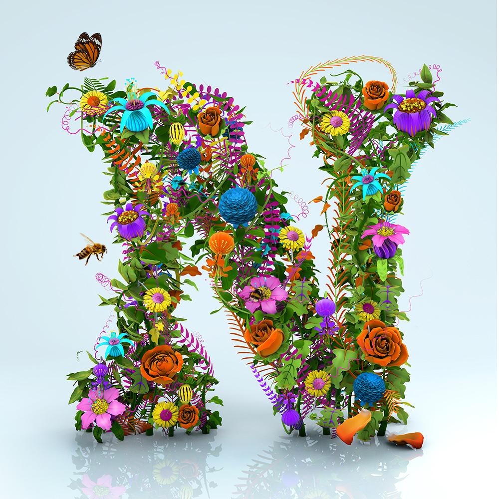 New N in bloom